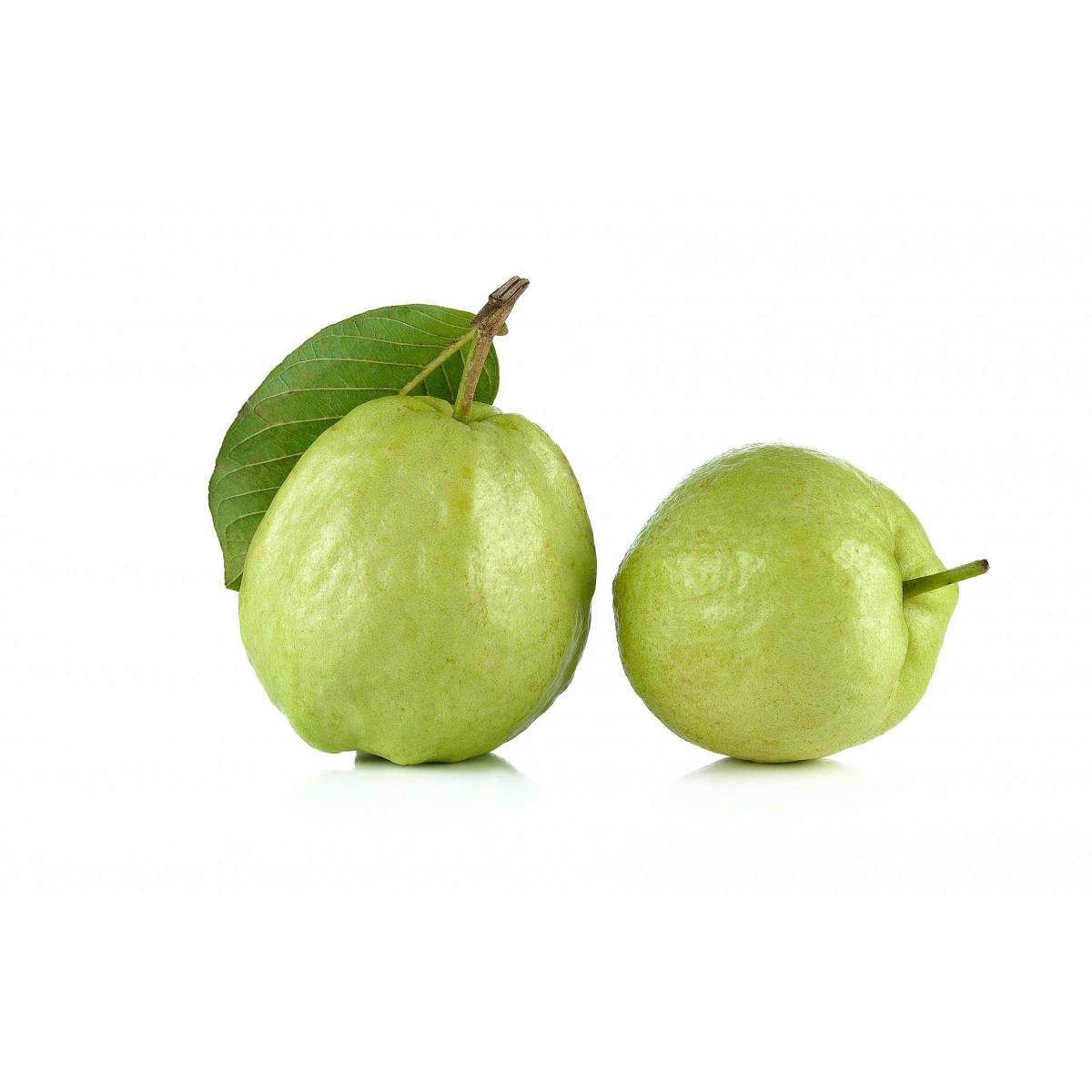 Thailand Fruit Wholesaler Email Mail: Thai Guava Seedless