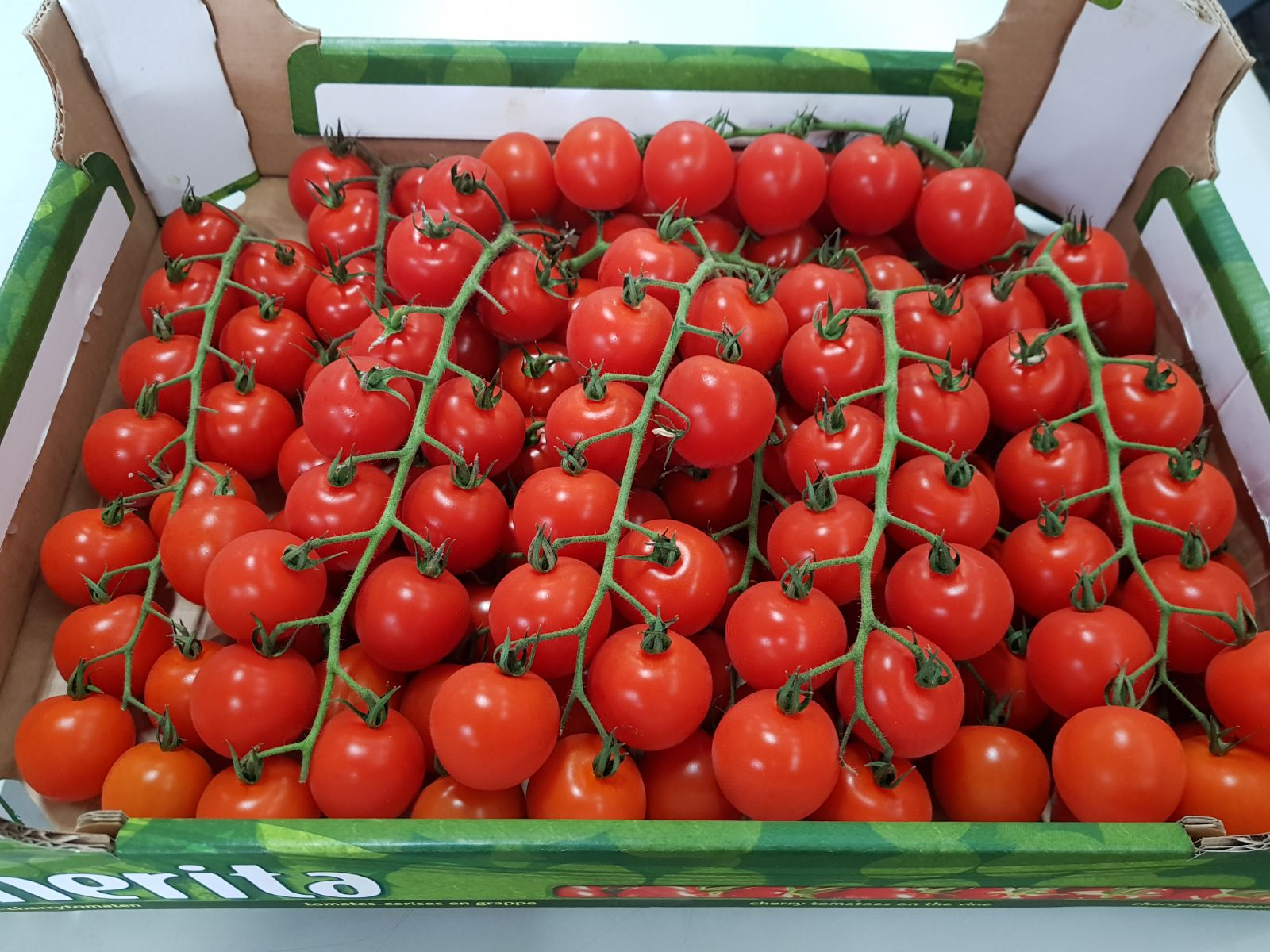 Cherry Tomatoes On Vine 3kg