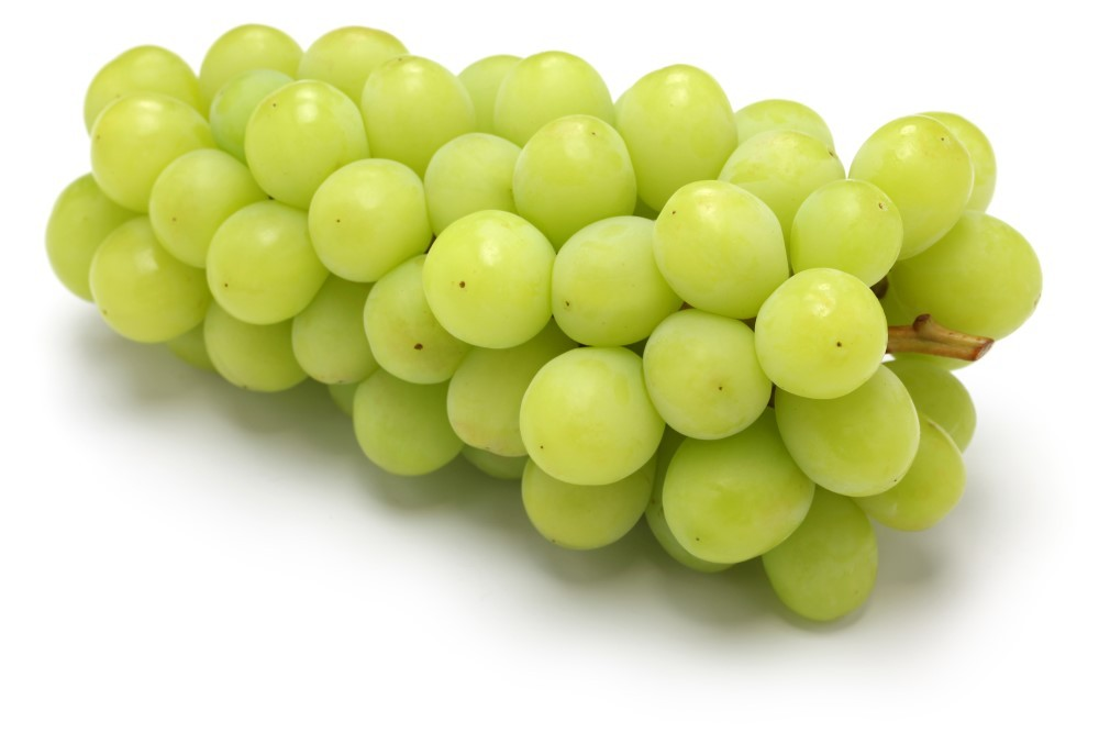 Shine Muscat Grapes Grapes Fruits Products Satoyu