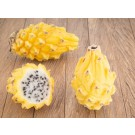 Yellow Pitahaya