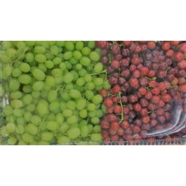 Sweet Seedless Grapes Buffet